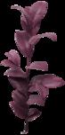 leaves1-(lthdsgn).png
