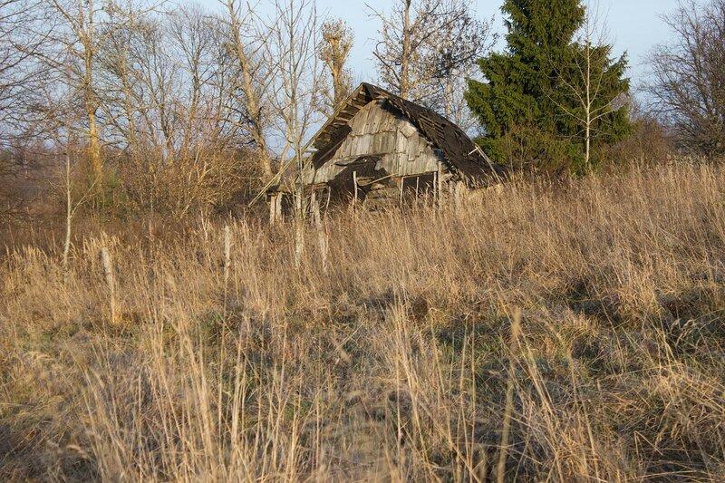 заброшенный домик у деревни Молотовка