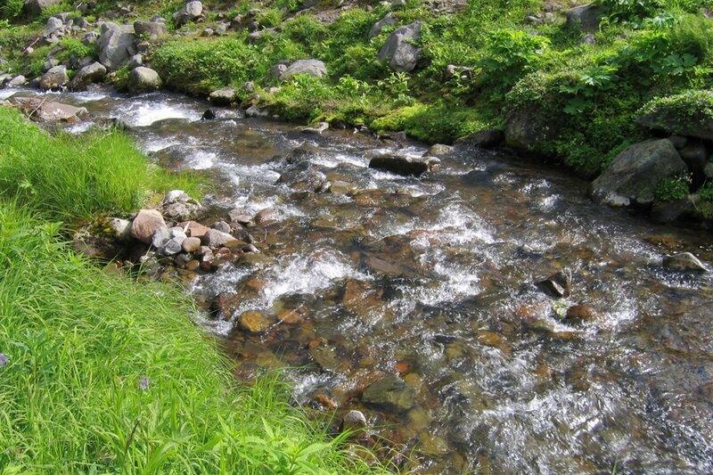 Горный ручей, Пиначевский перевал, Камчатка