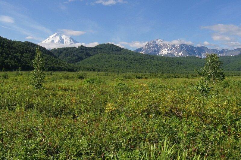 Панорама Налычевской долины