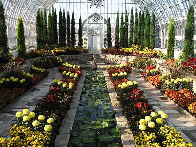 теплица с цветами цветочный сад с прудом