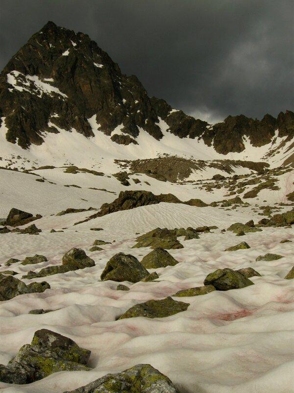 Арбузный снег, горы Сьерра-Невада, Калифорния, США