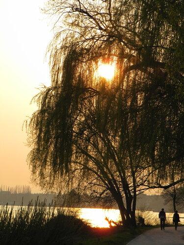 http://img-fotki.yandex.ru/get/6/kookaburra7.2/0_24de4_20fa53c6_L.jpg