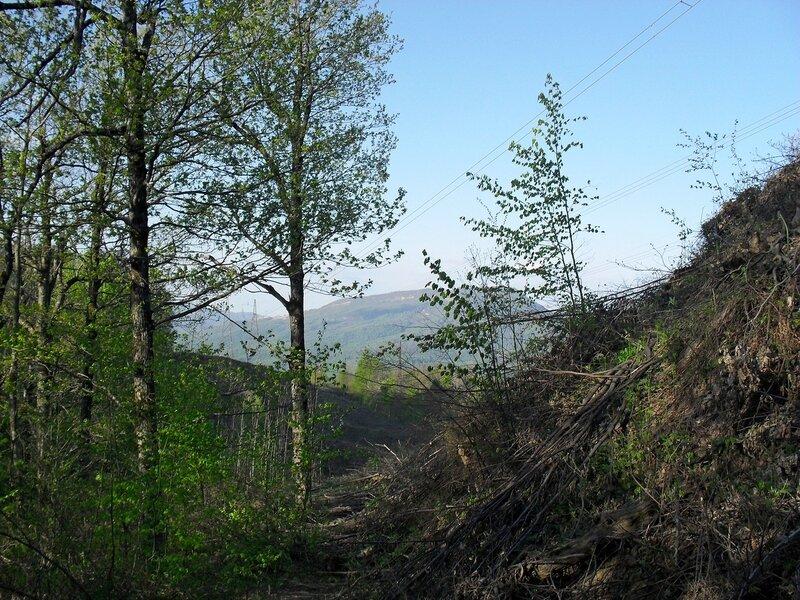 В горах, апрель ...SDC15853