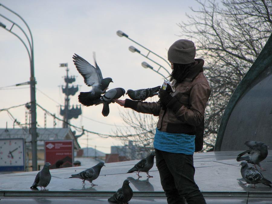 город, девушка, женщина, молодая, москва, россия, голуби, кормление, кормят