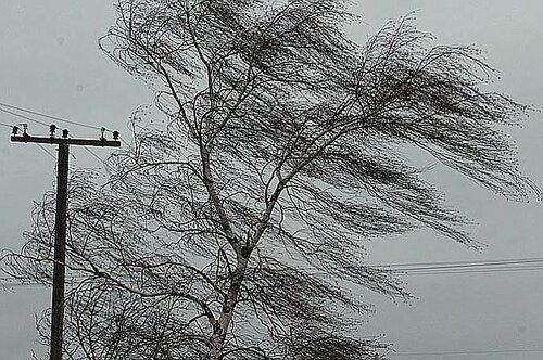 Из-за сильного ветра населённые пункты остались без света