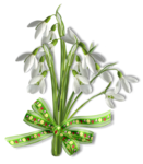 весенние цветы (23).png