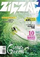 Журнал Zigzag №11-12 (ноябрь-декабрь), 2012 / SA