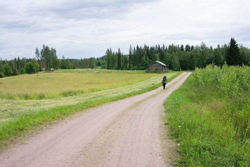 поля у озера Nousiinjarvi