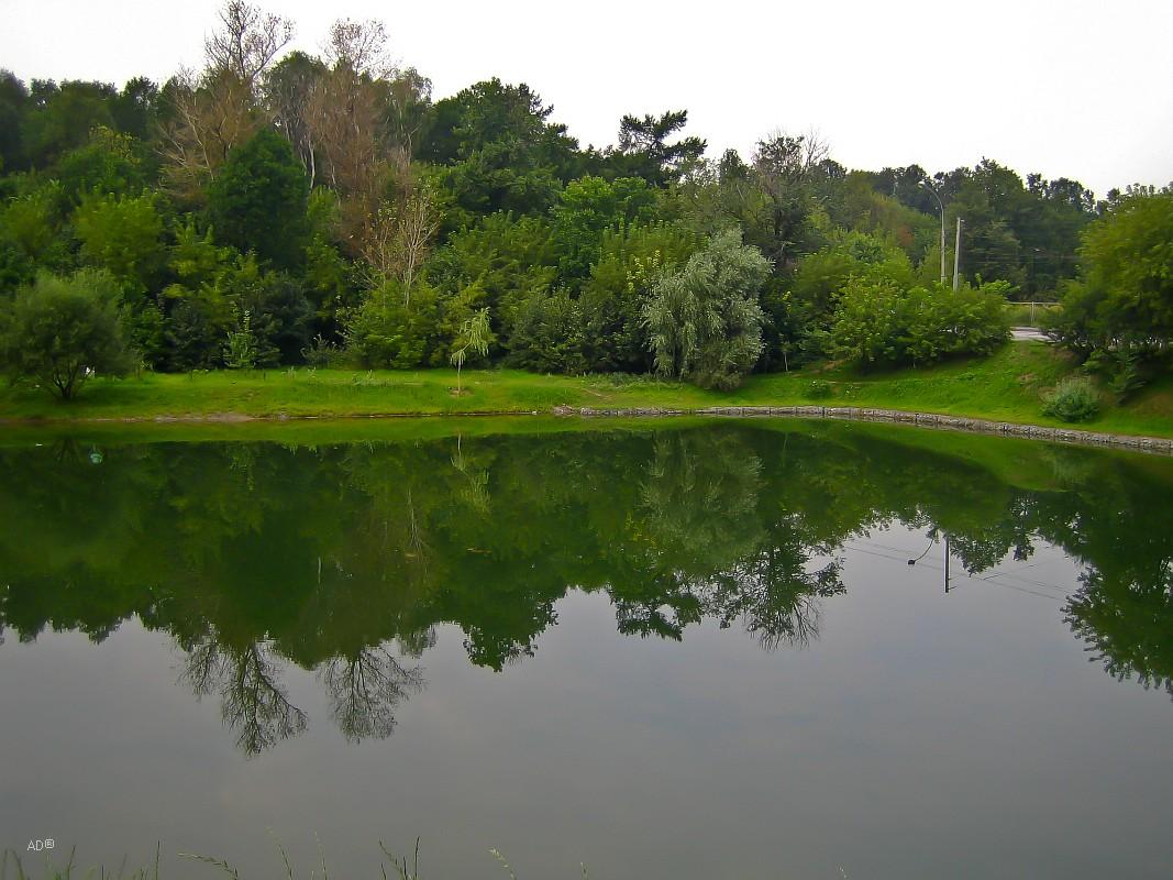 Шестой Путяевский пруд