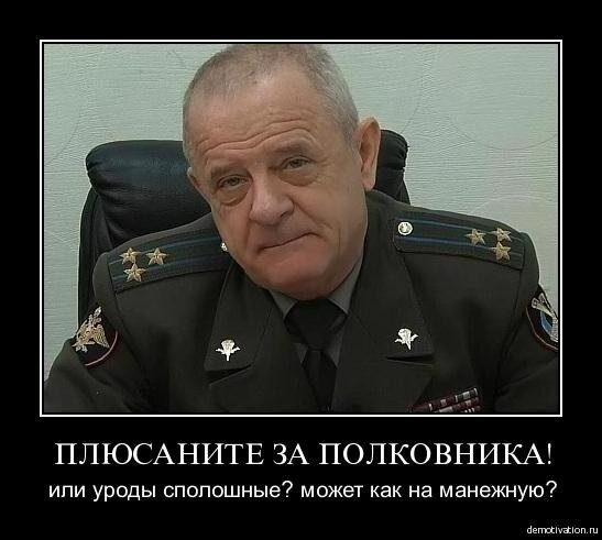 Плюсаните за полковника, блеадь!