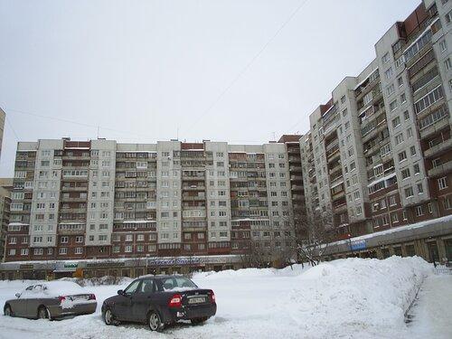 Бухарестская ул. 114к1