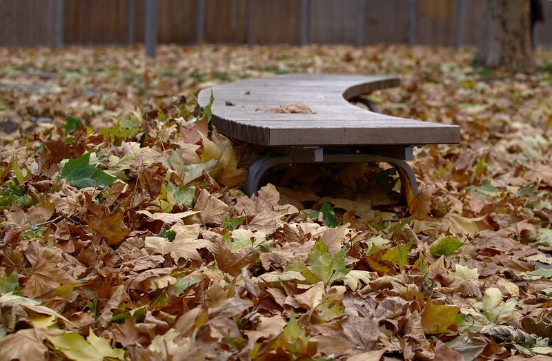 Скамейка в листве