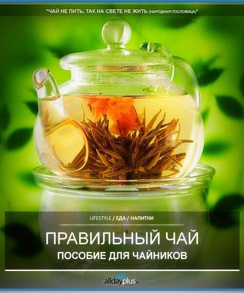 Кое что о правильном чае. Что такое и какой существует чай и как в нем разбираться.