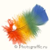 клипарт перья