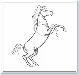 Как рисовать лошадь
