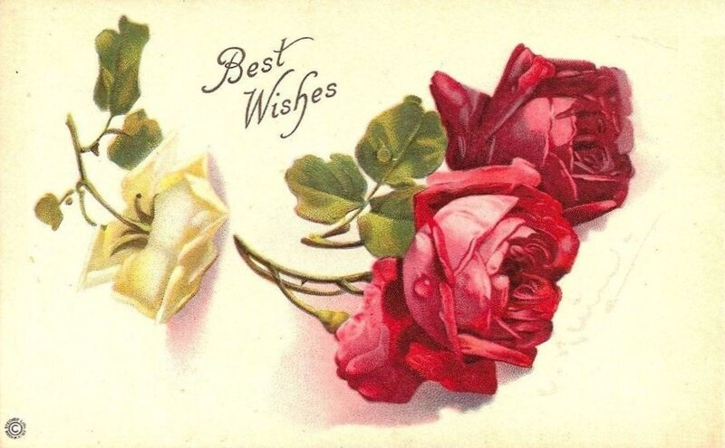 К. Кляйн. Три розы.
