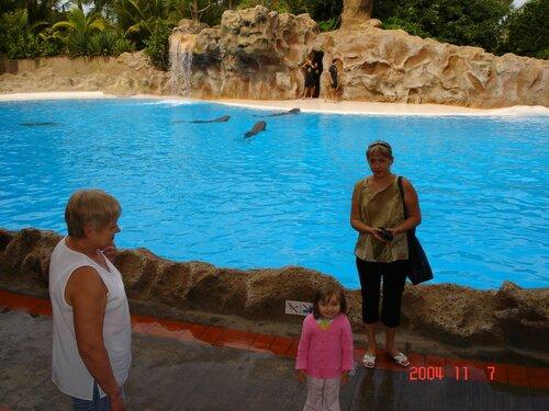 В дельфинарии Лоро-парка на острове Тенерифе.