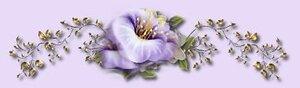 нежно-сиреневый цветок на фоне