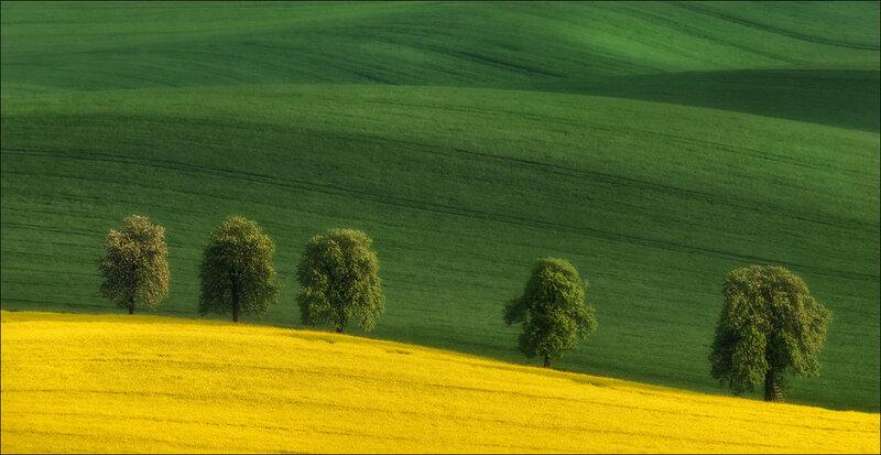 Влад Соколовский: Весна в Южной Чехии