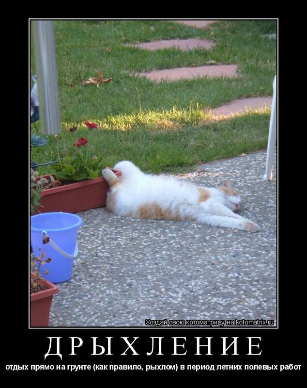 http://img-fotki.yandex.ru/get/6001/posmetnaia-el.c8/0_479aa_1919db28_XL.jpg
