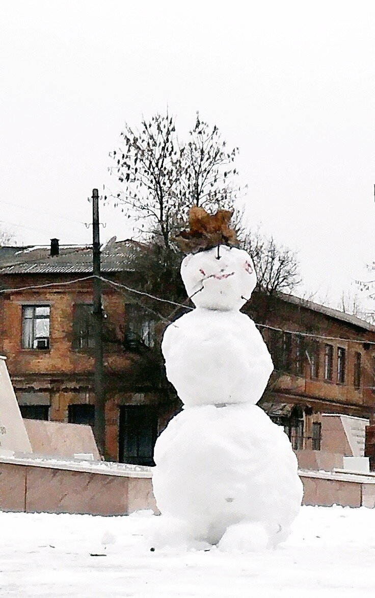 В условиях снежного дефицита