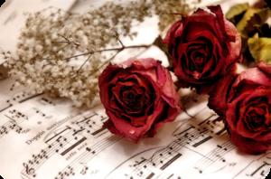 тёмный коллаж(розы с бумагой)