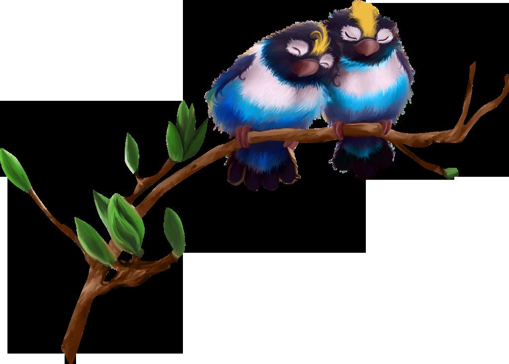 Птички картинки для презентации