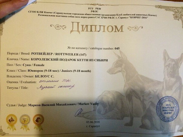 https://img-fotki.yandex.ru/get/60015/225487091.ac/0_13bd15_1ac7e66e_XL.jpg