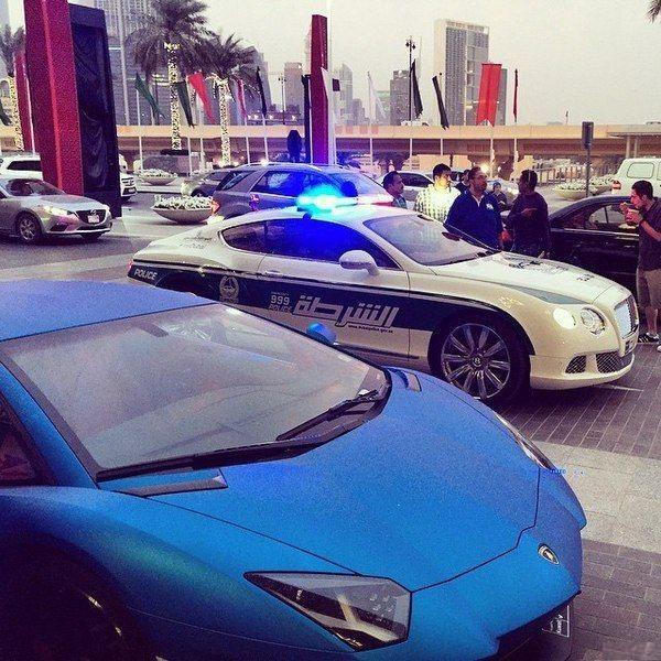 Метрополитен в Дубае. Разница между женской частью вагона и мужской