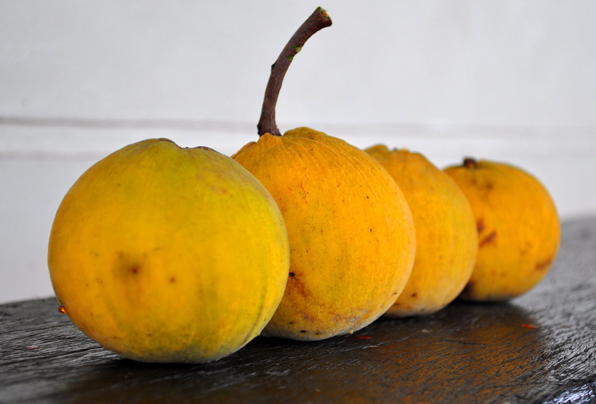 Сантол. Мякоть плода сочная и сладкая. (whologwhy)