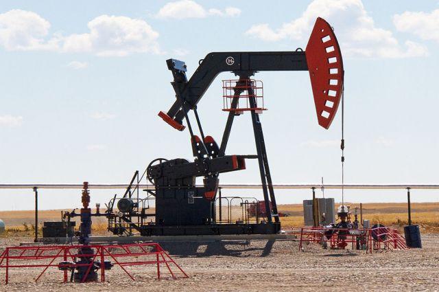 Стоимость нефти марки Brent превысила $43
