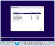 Windows 10, Version 1607 with Update [14393.187] (x86-x64) AIO [36in2]