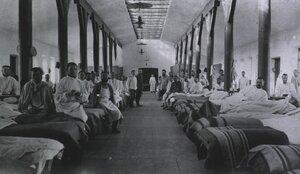 Полевой подвижный госпиталь No. 53. Провизорская