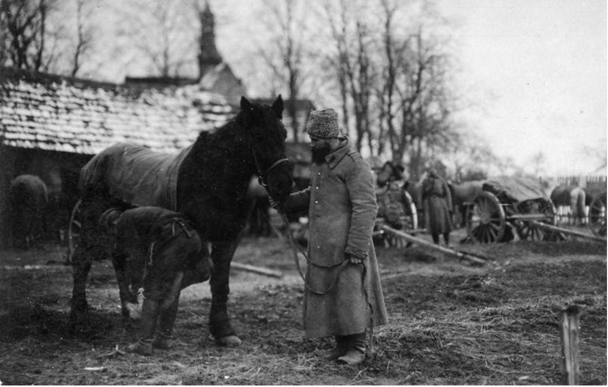 Снаряжение лошади