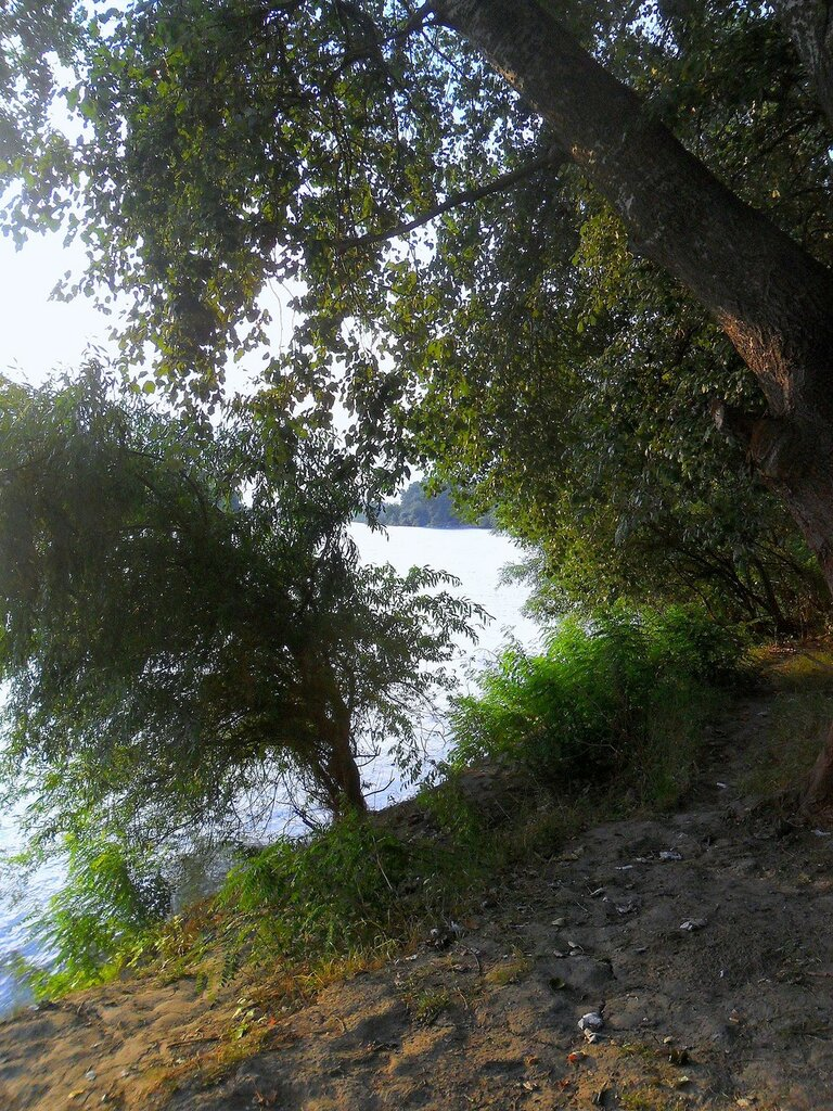 Август, велопробег, Кубань, 2014 год... SAM_3475