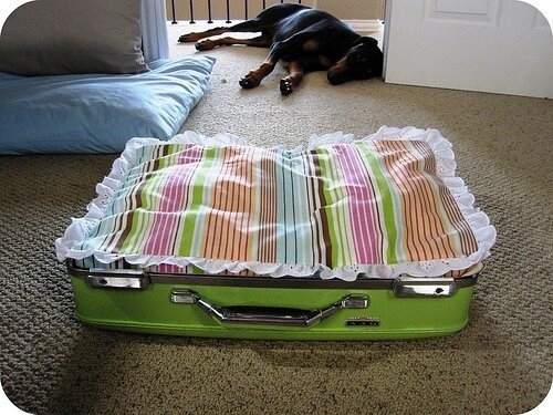 Она сделана из старого чемодана ее любящей хозяйкой.