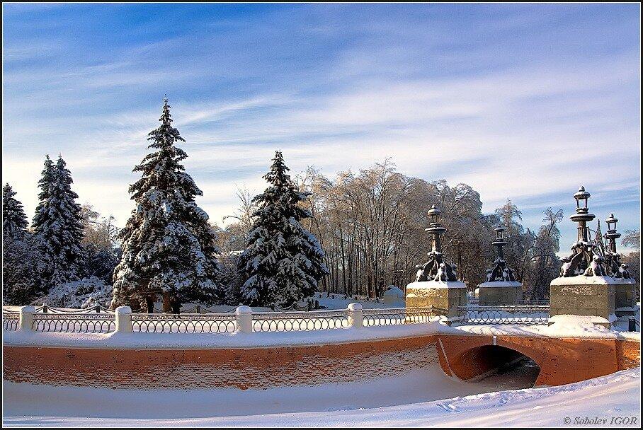 Зимний парк.