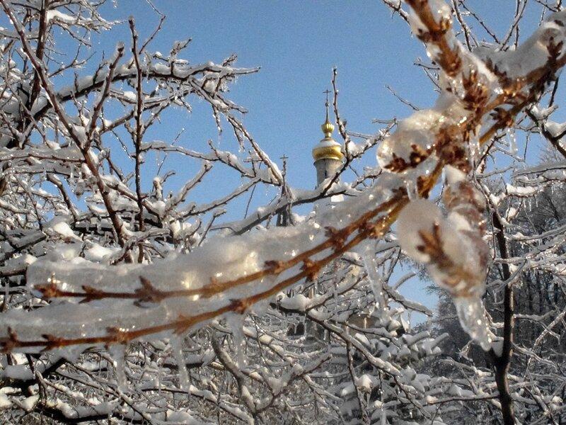 Зима,с.Остров,подворье,ледяной плен