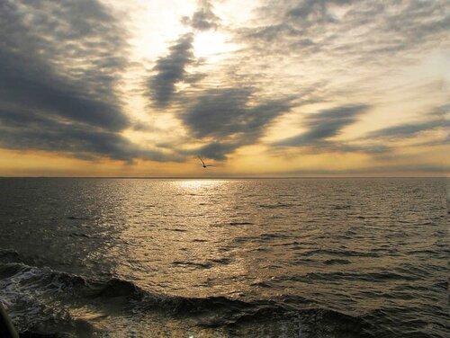 Суровое Белое море
