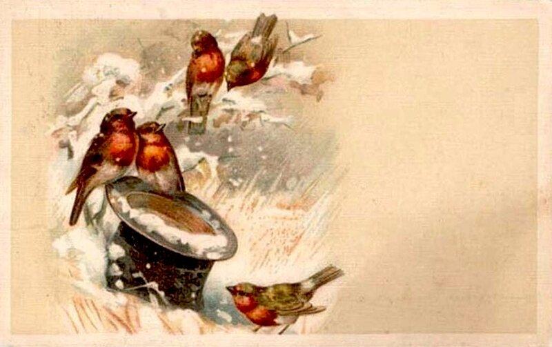 К. Кляйн. Птицы зимой и шляпа.