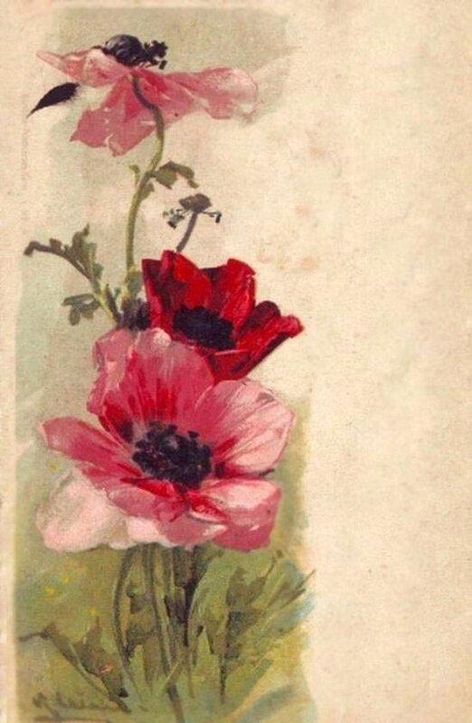 К. Кляйн.   Цветы.