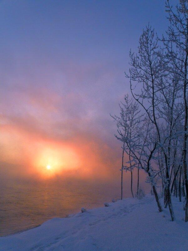 Солнце в тумане