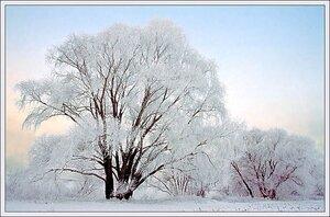 Февральские морозы не покинут Приморье