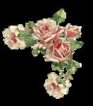 Ніжні рози схема для вишивання.