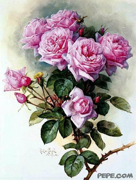 С днем рождения Людмила Валериевна!!!! 0_14aa97_5a270f9a_XL