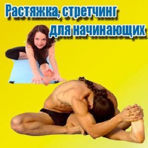 Книга Растяжка, стретчинг для начинающих (2013) DVDRip