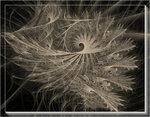 1064 - fractal .jpg