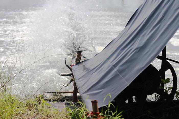 Разведение креветок в Таиланде