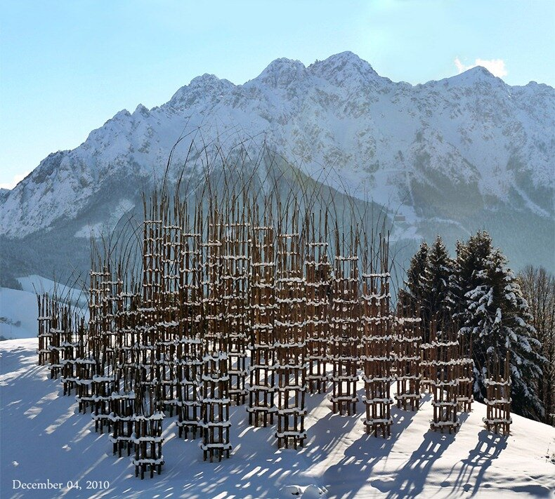 собор из деревьев